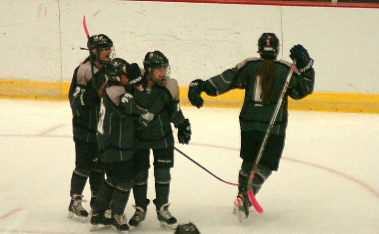 Sun Prairie players after Zephryn Jager scores to tie the game at one in the 1st Period in the state championship game.