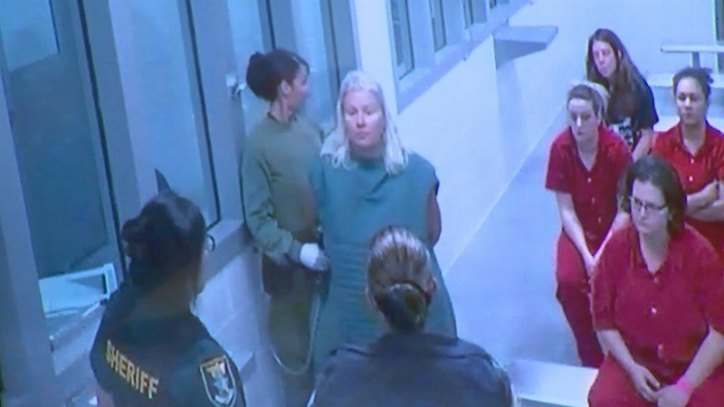 Image from a video conferencing screen as Lois Reiss makes an appearance in a Florida courtroom this weekend.