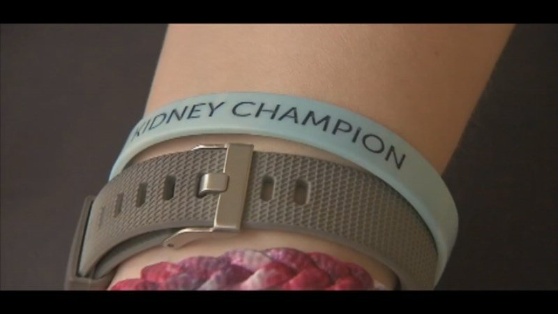 Wristband worn by Amy Prince.