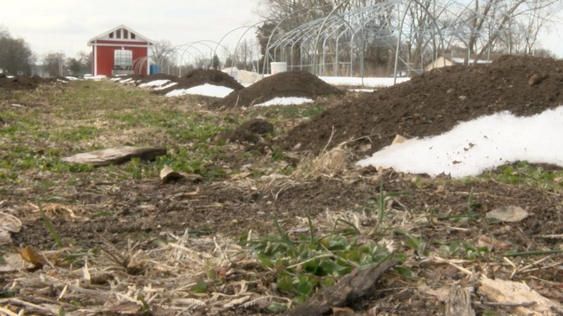 Cold spring weather impacting area gardens - WEEK.com: Peoria-area ...